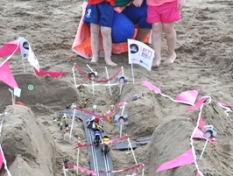 balbriggan_summerfest_sandcastle_competition_31may14_45p
