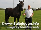 horse_drive_in_aid_of_temple_street_ring_commons_13sep14_3
