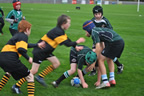 balbriggan_rugby_club_home_matches_23oct11_11_smaller