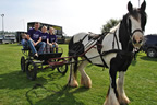 horse_drive_in_aid_of_temple_street_ring_commons_13sep14_smaller