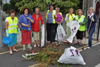 balbriggan_tidy_towns_adopt_a_patch_29jun15_smaller