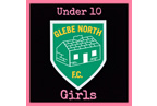glebe_north_u10_girls_smaller