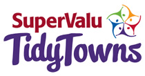 tidy_towns_2016