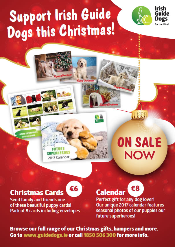 SUPPORT_IRISH_GUIDE_DOGS_FINAL
