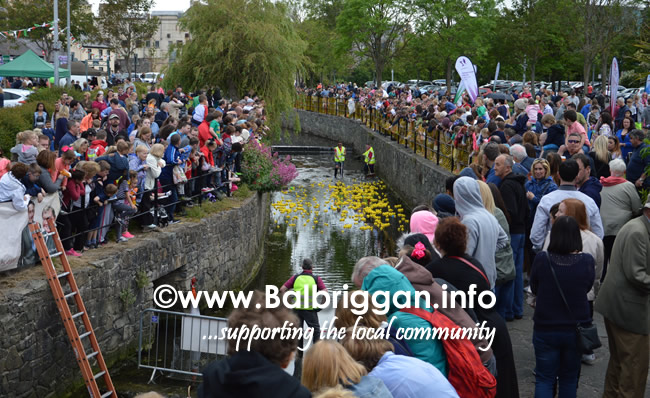 balbriggan summerfest duck derby 04jun17_10