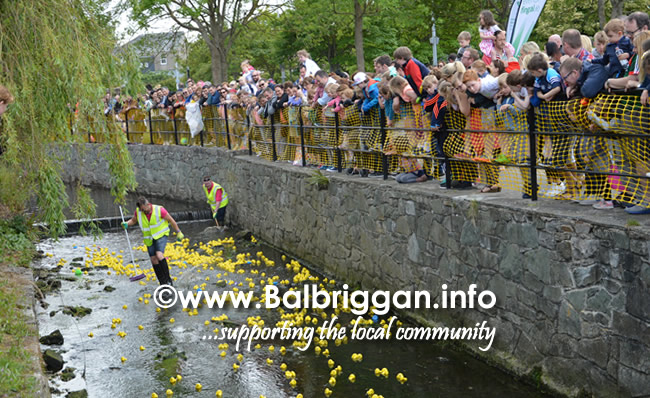 balbriggan summerfest duck derby 04jun17_12