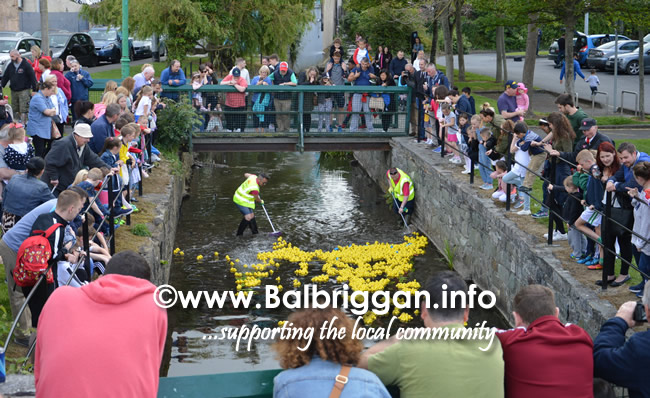 balbriggan summerfest duck derby 04jun17_4