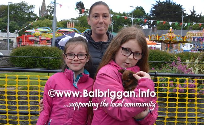 balbriggan summerfest pet show 04jun17_10
