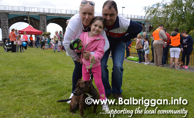 balbriggan summerfest pet show 04jun17_11