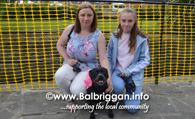 balbriggan summerfest pet show 04jun17_18
