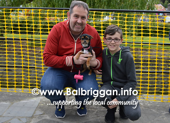 balbriggan summerfest pet show 04jun17_19
