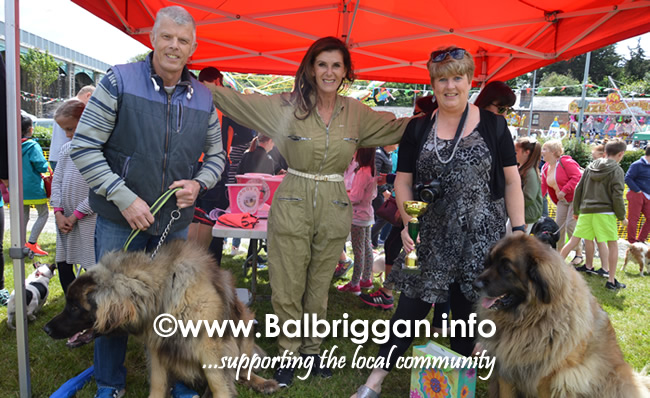 balbriggan summerfest pet show 04jun17_2