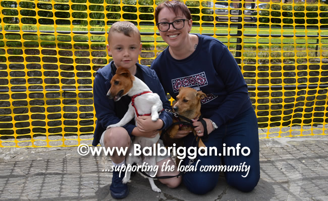 balbriggan summerfest pet show 04jun17_20