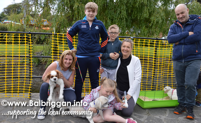 balbriggan summerfest pet show 04jun17_21