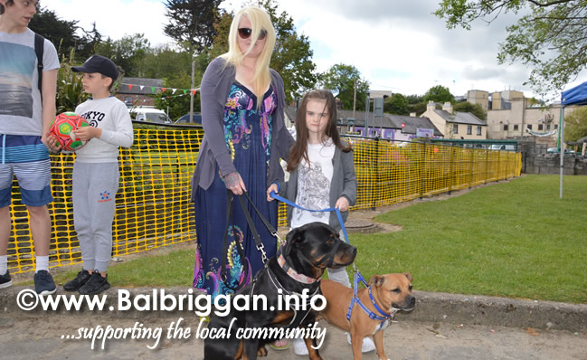 balbriggan summerfest pet show 04jun17_22