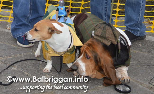 balbriggan summerfest pet show 04jun17_23