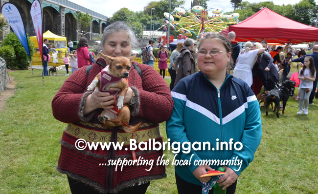 balbriggan summerfest pet show 04jun17_25