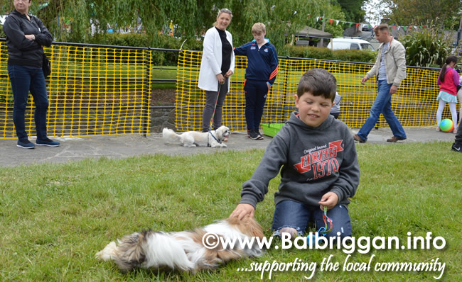 balbriggan summerfest pet show 04jun17_4
