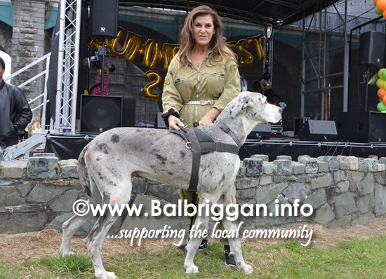 balbriggan summerfest pet show 04jun17_8