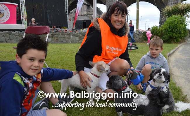 balbriggan summerfest pet show 04jun17_9