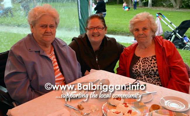 balbriggan-summerfest-senior-citizens-tea-party-and-bingo-03jun17_10