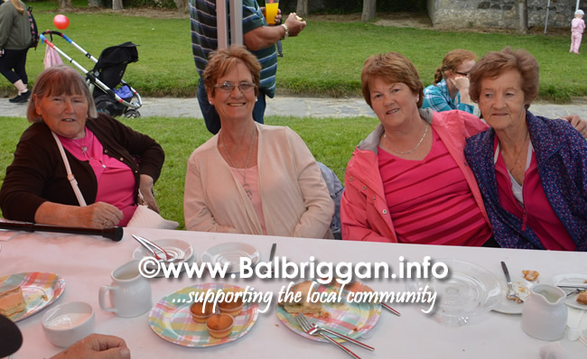 balbriggan-summerfest-senior-citizens-tea-party-and-bingo-03jun17_11