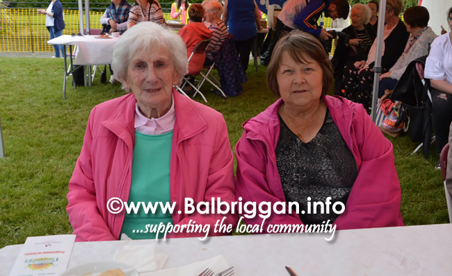balbriggan-summerfest-senior-citizens-tea-party-and-bingo-03jun17_12