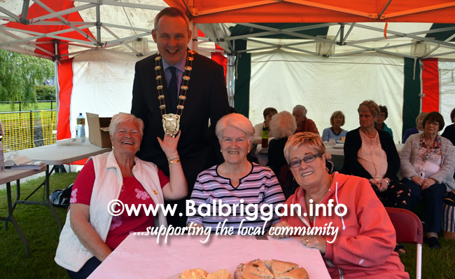 balbriggan-summerfest-senior-citizens-tea-party-and-bingo-03jun17_13