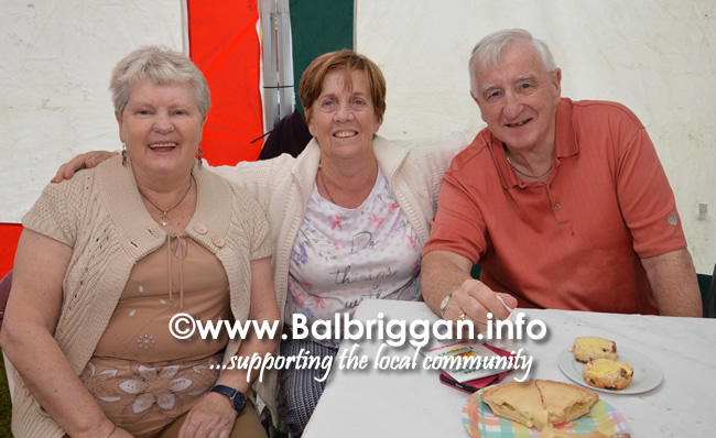 balbriggan-summerfest-senior-citizens-tea-party-and-bingo-03jun17_4