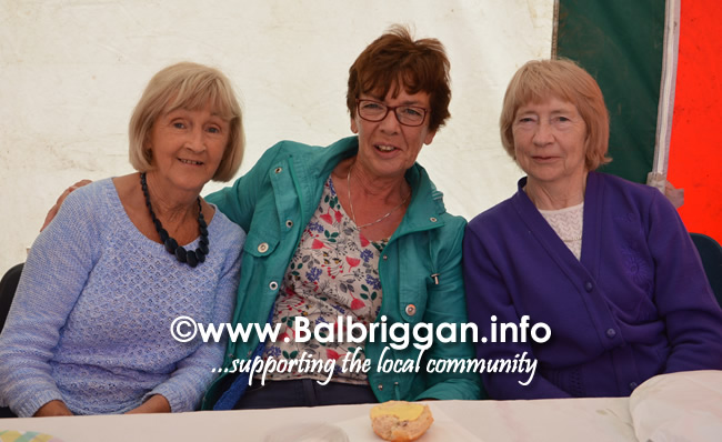 balbriggan-summerfest-senior-citizens-tea-party-and-bingo-03jun17_5
