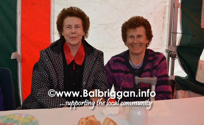 balbriggan-summerfest-senior-citizens-tea-party-and-bingo-03jun17_6