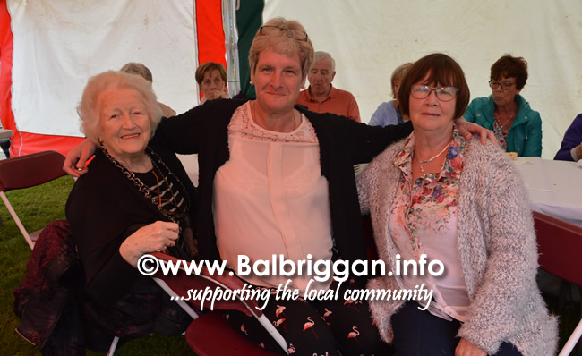 balbriggan-summerfest-senior-citizens-tea-party-and-bingo-03jun17_7