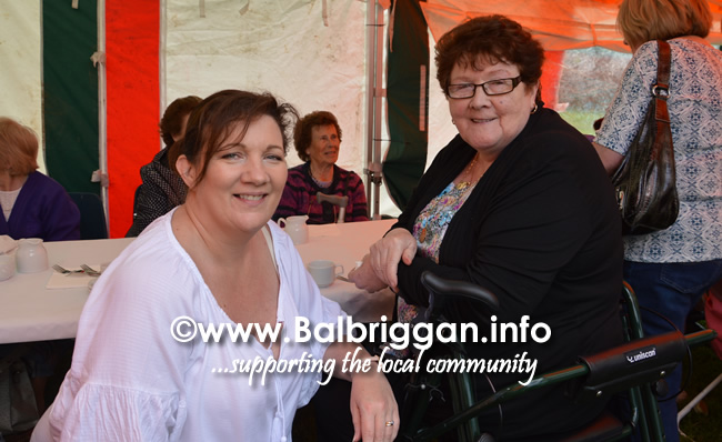 balbriggan-summerfest-senior-citizens-tea-party-and-bingo-03jun17_8