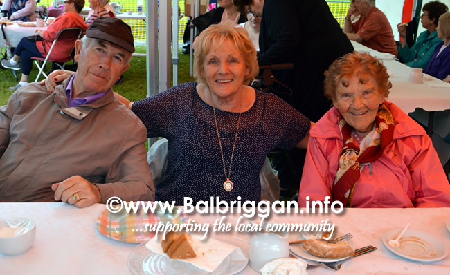 balbriggan-summerfest-senior-citizens-tea-party-and-bingo-03jun17_9