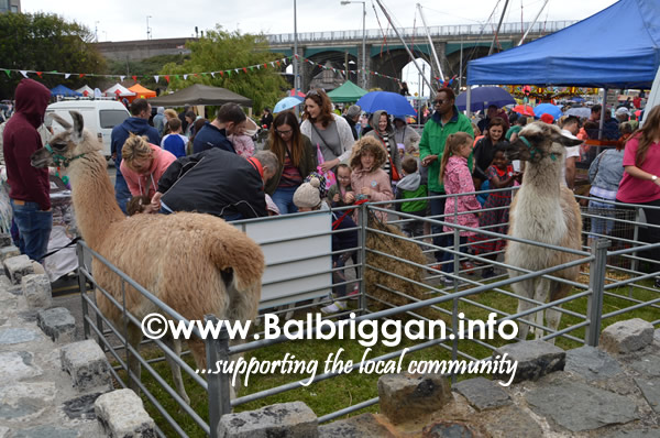 balbriggan summerfest sunday 04jun17_30