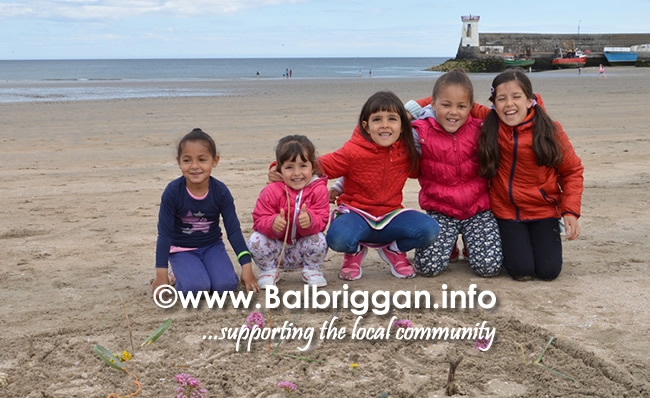 balbriggan_summerfest_sandcastle_competition_03jun17_39