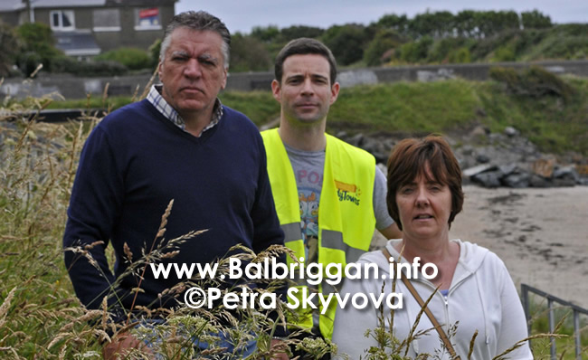 Drowning in nettles on Balbriggan Beach 04jul17_2
