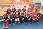 Balbriggan FC end of season presentation day 12-Nov-17_smaller