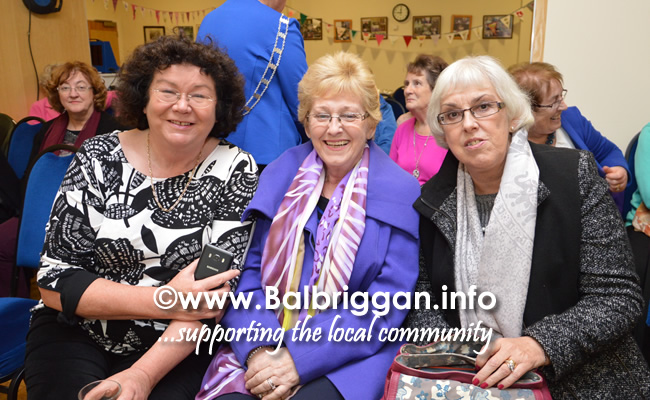 balbriggan ica group meeting 23nov17_7