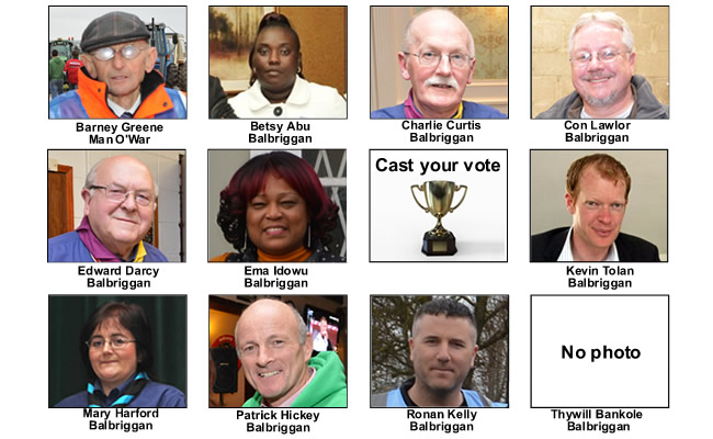 public_vote_mayor_of_fingal_balbriggan_nominees