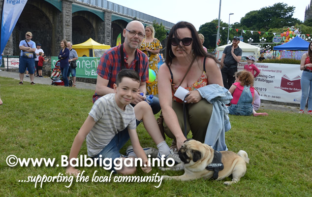 balbriggan summerfest pet show 03jun18