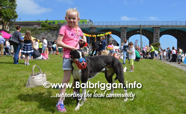 balbriggan summerfest pet show 03jun18_13
