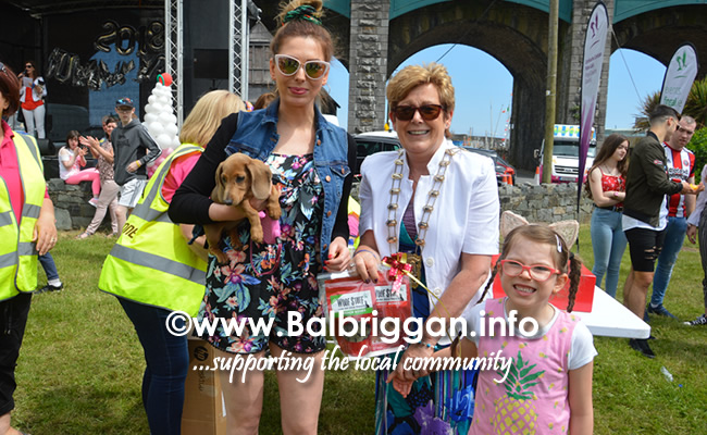 balbriggan summerfest pet show 03jun18_15