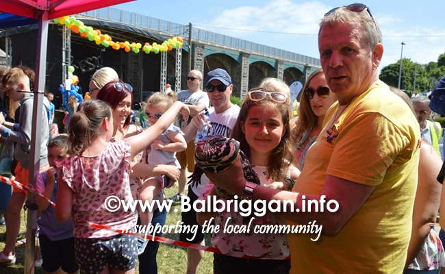 balbriggan summerfest pet show 03jun18_17