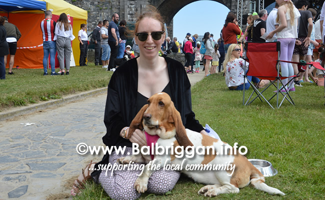 balbriggan summerfest pet show 03jun18_4