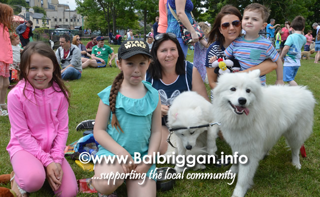 balbriggan summerfest pet show 03jun18_7