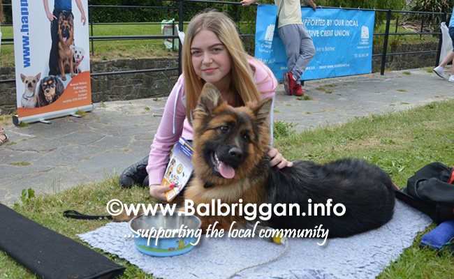 balbriggan summerfest pet show 03jun18_8