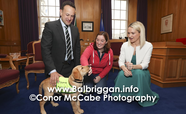 Irish Guide Dog Day 2019_1
