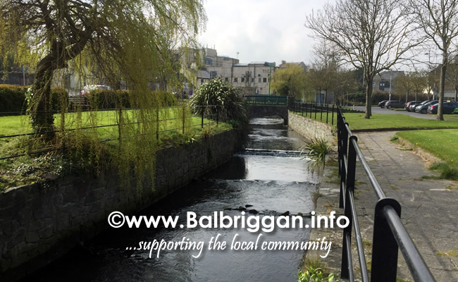 people making a difference in balbriggan 07apr19_3
