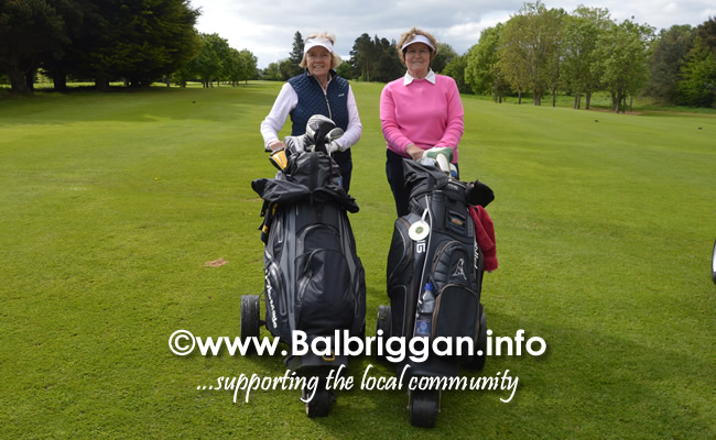 Pink Day in aid of Breast Cancer Research Ireland at Balbriggan Golf Club 28-May-19_7